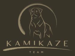 Logo Kamikaze Rott