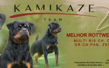 Galeria de Imagens: Kamikaze Rott Banner DogShow